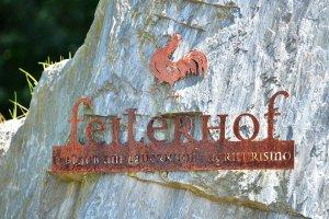 Feilerhof Klausen in Südtirol 11